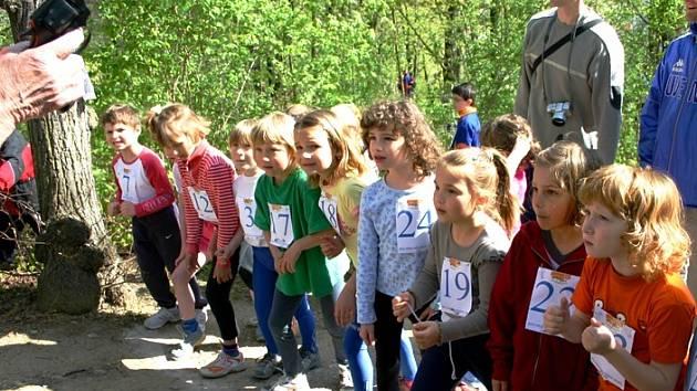 Tradiční běžecké soutěže O pohár města Berouna, která se konala tuto sobotu na Městské hoře, se zúčastnili nadšenci z řad dětí, mládeže i dospělých.