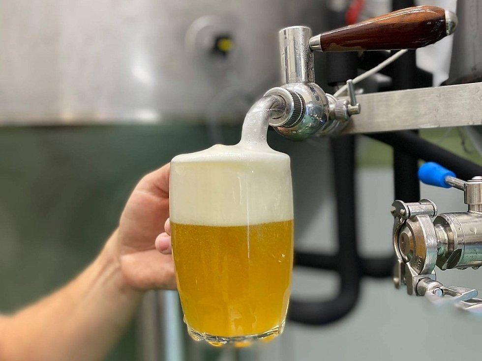 Z pivovaru Matuška v Broumech, který je novým provozovatelem restaurace v obecním domě u metra Hradčanská.