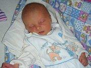 Mamince Anetě Volfové z Dolních Hbit, se 23. prosince 2018 narodilo první miminko, dcerka Malvína. Malvínka přišla na svět s váhou 2,82 kg a mírou 47 cm.