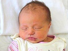 Rodiče Soňa Marešová a Ondřej Beneš mají radost ze své dcery Barborky, která se narodila v sobotu 6. srpna 2016 v hořovické porodnici. Barborce sestřičky v ten den navážily 3,38 kg a naměřily 49 cm. Rodinka má domov v Hořovicích.