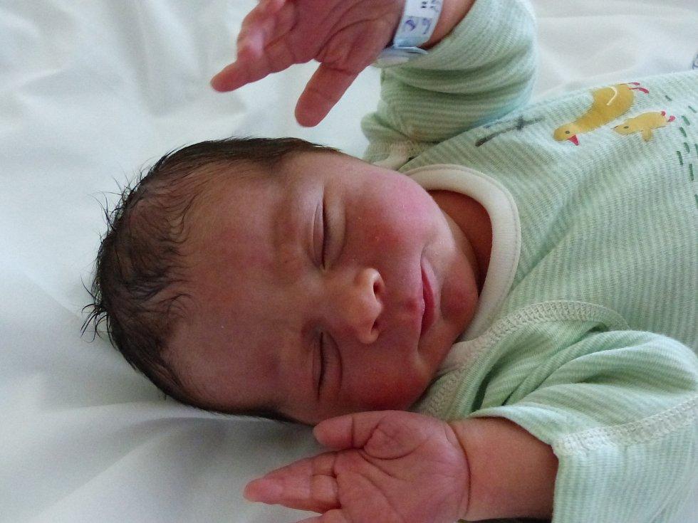 Radek Rys se narodil 25. července 2021 v kolínské porodnici, vážil 3290 g a měřil 49 cm. V Netřebicích bude vyrůstat s maminkou Michaelou a tatínkem Janem.