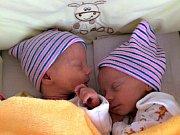 DVOJNÁSOBNOU radost mají Michaela Rohlíková a Marián Bársony z Bavoryně, kterým se 31. prosince 2017 narodily dcery, Viktorie a Kristýna. Viktorka vážila po narození 2,12 kg a měřila 46 cm. Kristýnčiny porodní míry byly 2,56 kg a 46 cm. Foto: Rodina