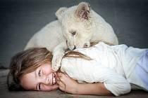 Dobrodružný film Mia a bílý lev