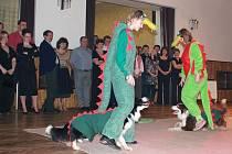 Sobotní ples hořovických kynologů zpestří skupina Merkur, tombola i psí tanečníci