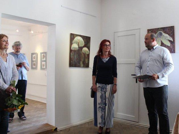Vernisáž obrazů Kamily Havlíkové v Galerii Starý zámek