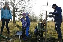 Spolek Berounská zeleň uspořádal další sázení ovocných stromků.