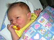 MARIE Froňková se narodila 7. prosince 2017, vážila 3,75 kg, měřila 52 cm a křestní jméno má po svých prababičkách. Manželé Karolina a Tomáš připravili pro prvorozenou dcerku Marušku postýlku doma v Berouně.