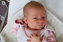 Dne 25. května 2019 se narodila Stella Procházková s váhou 2,93 kg a mírou 48 cm, dcera manželů Elišky a Alexe z Prahy. Stellinku bude dětským světem provázet bráška Kryštůfek (3).