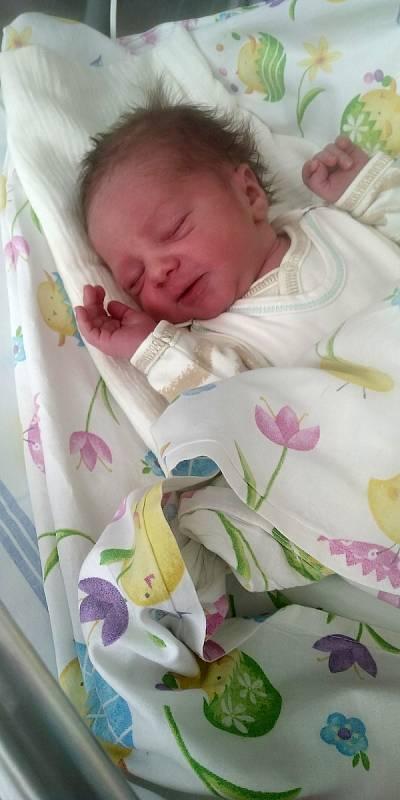 František Koňas se narodil 24. května v příbramské nemocnici Kláře Šídové a Pavlu Koňasovi, vážil 3010 g. Rodina bydlí v Příbrami.
