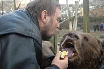 Medvědí bráškové Kuba, Vojta a Matěj slavili narozeniny.