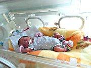 K synkovi Ondřejovi (3 r. 6 m.) si manželé Ludmila a Ondřej Váňovi pořídili ve středu 16. dubna druhé dítko, dcerku Lucii. Lucinka vážila po narození 1,67 kg a měřila 38 cm. Rodinka má domov v Nižboru. Foto: Rodina