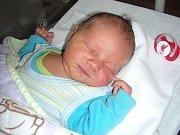 Do Žebráku přibyl 18. dubna 2014 nový občánek. Je to kluk, jmenuje se Ashley Kment a je prvorozeným synem manželů Simony Kment Korecké a Jiřího Kmenta. Ashley vážil po příchodu na svět 3,83 kg a měřil 51 cm.