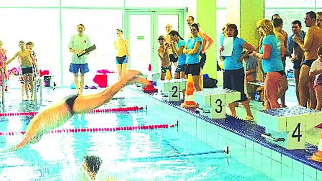 Plavci ze sokolských jednot se utkali o tituly v hořovickém bazénu.