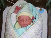 Čtyřleté Simonce si rodiče Zuzana a Pavel z Malé Hraštice pořídili druhé dítko, syna Pavla. Narodil se 25. listopadu 2018, vážil 3,003 kg a měřil 49 cm.
