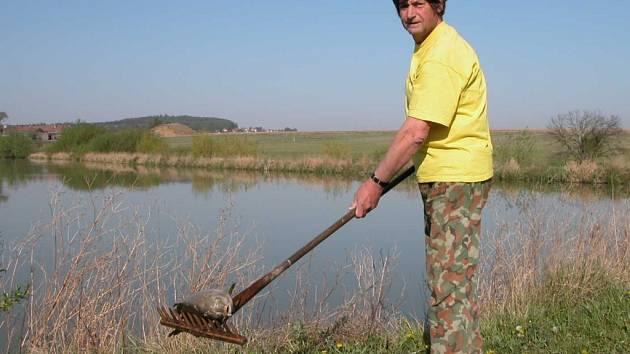V rybníku podle majitele uhynuly tři metráky ryb.
