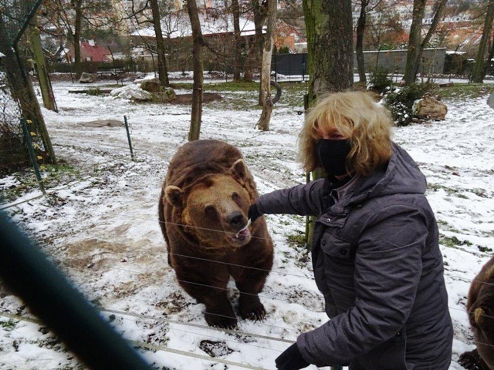 Děti oslavily s medvědy narozeniny.