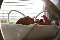 V hořovické nemocnici našla uklízečka pohozené novorozeně. Okamžitě se ho ujali lékaři.