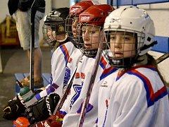 Hokej ženy: Lvice Beroun - Roudnice