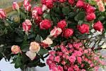 Ke svátku zamilovaných patří květiny.