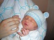Dne 16. ledna 2014 přivítali společně na světě manželé Veronika a Jan Rippelovi své první miminko, syna Jindřicha. Jindřich vážil po porodu 3,06 kg a měřil 47 cm. Domov má novopečená rodinka v Hostivicích.