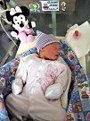 ŠŤASTNÝM rodičům, Elišce a Petrovi Krejbichovým, se 13. prosince 2017 narodilo první miminko, dcerka Kateřina. Kačenka vážila po příchodu na svět 3,10 kg a měřila 49 cm. Foto: Rodina