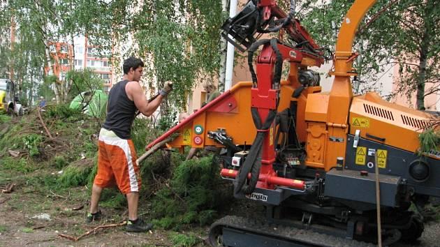 Revitalizace zeleně začala na sídlišti Nad Stadionem nejdřív kácením.