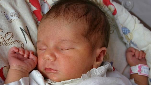 Dcera Žaneta se narodila 7. února Haně a Lubošovi Budilovým z Mýta. Jejich holčička vážila 3350 gramů a měřila 52 centimetrů. Doma už má tříletou sestru Simonku