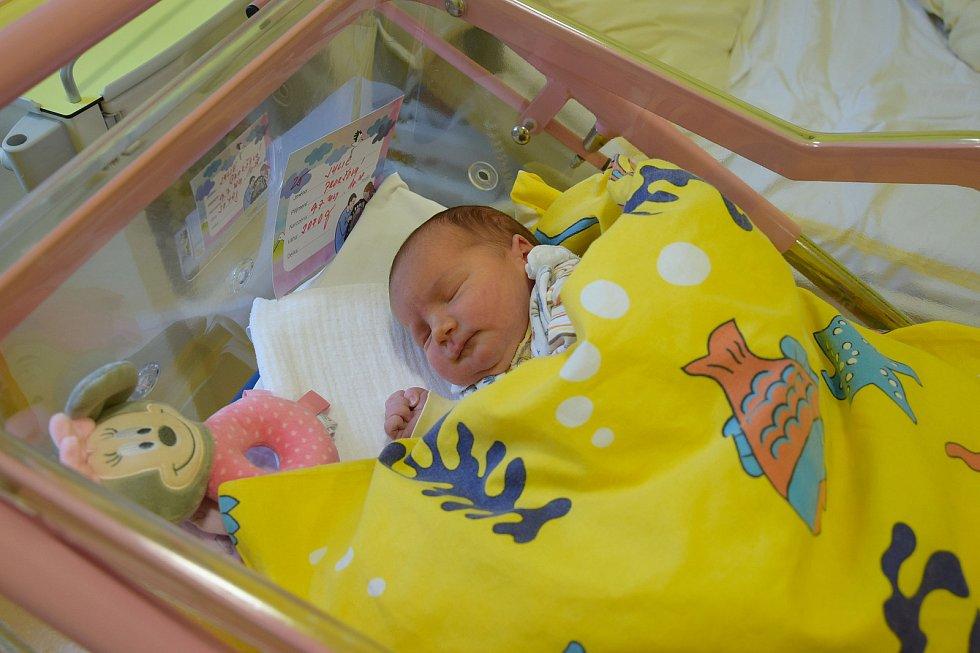 Julie Prokšová se manželům Barboře a Danielovi narodila v benešovské nemocnici 9. července v 10.28 hodin, vážila 3070 gramů. Doma v Kunicích na ni čekala sestřička Marie (3).