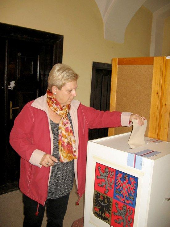 O složení parlamentu rozhodují voliči na Berounsku