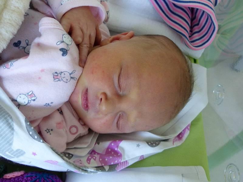 Lucie Plocková se narodila 8. června 2021 v kolínské porodnici, vážila 3560 g a měřila 50 cm. Do Olešky si ji odvezl bráška Vítek (2) a rodiče Jitka a Petr.