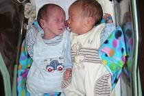 Rodičům Martině a Radkovi z Městečka se 6. června narodila dvojčátka, synové Luciano a Sebastian. Luciano vážil po porodu 1,37 kg a Sebastianovi sestřičky po porodu navážily 1,64 kg a naměřily 45 cm. Sestřičky Sandra (13) a Nikola (19) mají z brášků velko