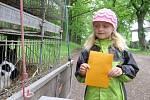 Pohádkový les v hořovické Dražovce