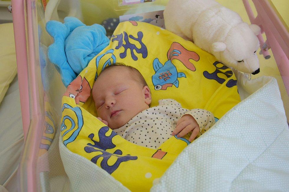 Stela Pavlíčková se manželům Lence a Martinovi narodila v benešovské nemocnici 13. července 2021 ve 12.39 hodin, vážila 3730 gramů. Doma ve Vlašimi na ni čekaly sestřičky Nela (10), Jolana (7) a Adina (3).