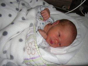 JAKUB se narodil ve čtvrtek 8. února 2018 v hořovické porodnici U Sluneční brány. Kubíčka bude dětským světem provázet sestřička Nela.