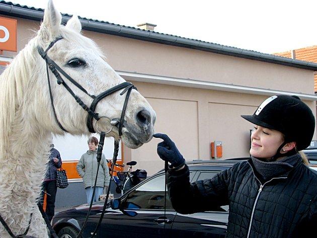STUDENTKA dobříšského gymnázia Lea Hlaváčková z Velkého Chlumce se i na letošní ročník Horymírovy sváteční jízdy vydala s kobylkou Jessie.