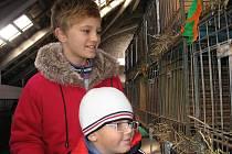 Hostomická výstava chovatelů a zahrádkářů 2011