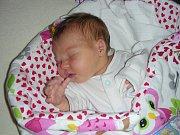 Třetí dcera se narodila 21. listopadu 2018 manželům Martině a Honzovi Najsrovým z Nového Jáchymova a dostala jméno Veronika. Dětským světem ji budou provázet sestřičky Lucinka (6 let) a Terezka (3 roky).