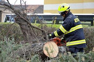 Silný vítr v Česku lámal stromy a ničil střechy. ČEZ vyhlásil kalamitní stav