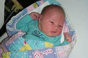 S krásnou váhou 4,50 kg a mírou 54 cm se v neděli 2. prosince 2018 v hořovické porodnici narodil chlapeček Davídek. Doma na bratříčka čekala sestřička Emmička.
