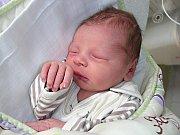 Jméno Vojta vybrali pro prvorozeného syna manželé Michaela a Radim Vilčkovi z Prahy. Vojtíšek se prvně rozkřičel do světa 5. března 2014 a v ten den vážil 3,54 kg a měřil 49 cm.