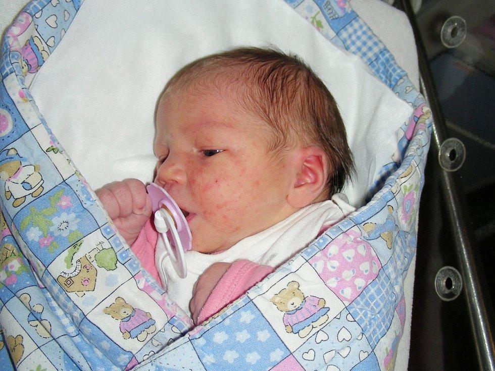Datum 18. listopadu 2019 má v rodném listě zapsané Adélka Chlustinová z Hořovic. Adélčina porodní váha byla 3,01 kg.