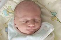 Manželům Martině a Romanovi Fulínovým se v pátek 3. 4. narodil prvorozený synek Tomášek. Po příchodu na svět navážily Tomáškovi sestřičky v porodnici 3,06 kg a naměřily 49 cm. Společně budou všichni žít doma v Březové.
