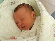 MÉ JMÉNO je Honzík Löbl a na svět jsem se prvně rozkřičel v sobotu 31. března 2018 v hořovické porodnici U Sluneční brány.