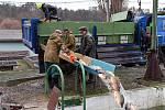 Z přípravy sádek v králodvorských Popovicích na vánoční prodej ryb.