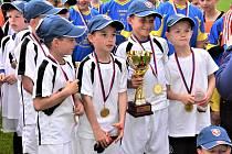 Fotbalisté ZŠ F.L. Čelakovského vyhráli krajské finále McDonalds cupu 1. - 3. tříd.