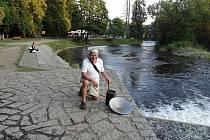 Rýžování zlata na Otavě ve Štěkni.