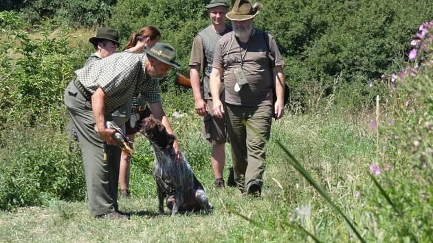 Lovečtí psi skládali v Mečichově zkoušky z vodní práce.