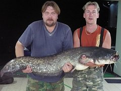 Délka 142 cm a váha 22 kg, to jsou míry sumce, kterého v noci ze soboty na neděli, přesně ve 23.35, ulovil Petr Švihovec ze Slaníku spolu s bratrem Jaroslavem na místní pískovně.