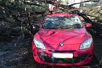 V ulici Lidická ve Strakonicích spadl strom na dvě auta.