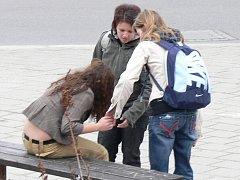Marie Dědičová a Stanislava Hauserová (na snímku) byly jedny z mála, které ši všimly, že je dívce na lavičce nevolno a šly jí pomoci.